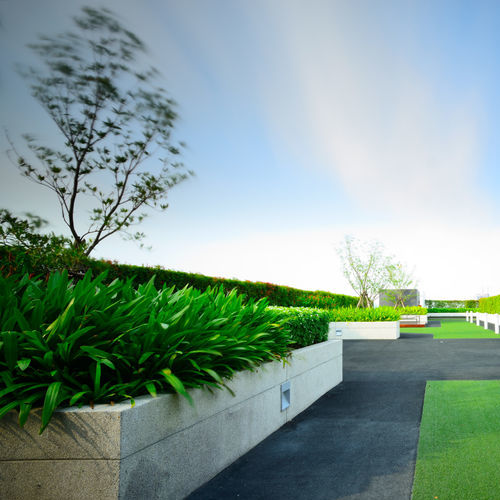 Blue sky and a sunny day on a green rooftop.