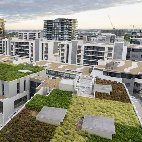 An aerial view of several green rooftops in an urban setting.
