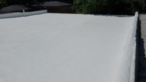 A Foam Roof